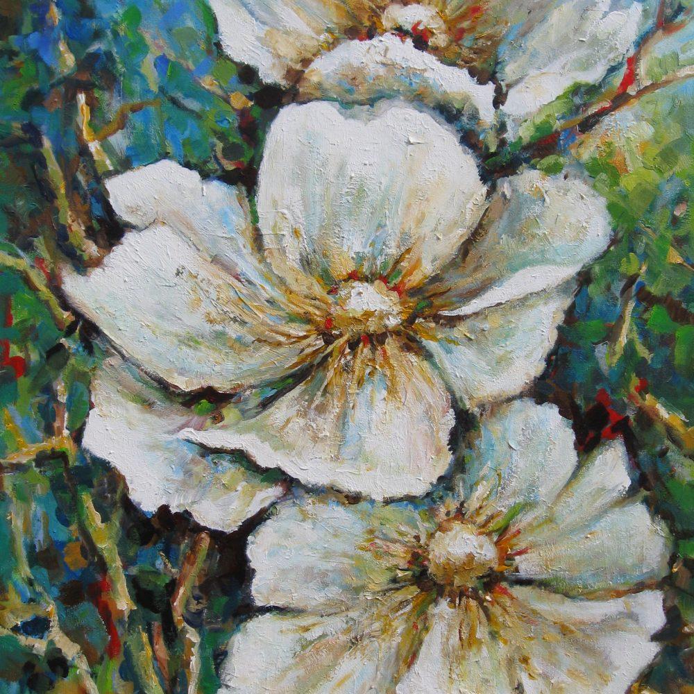 Drie witte bloemen